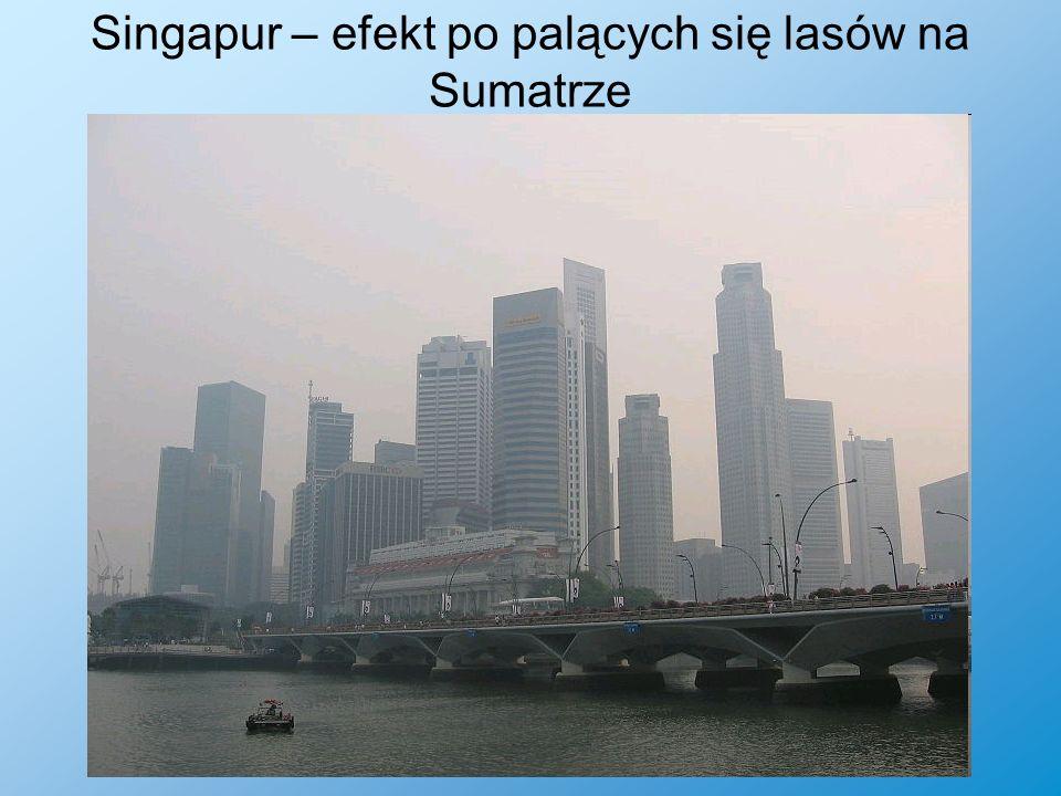 Singapur – efekt po palących się lasów na Sumatrze