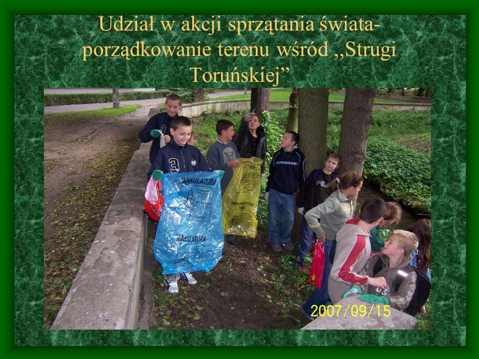 Prowadzenie zajęć dydaktycznych nad,,Strugą Toruńską