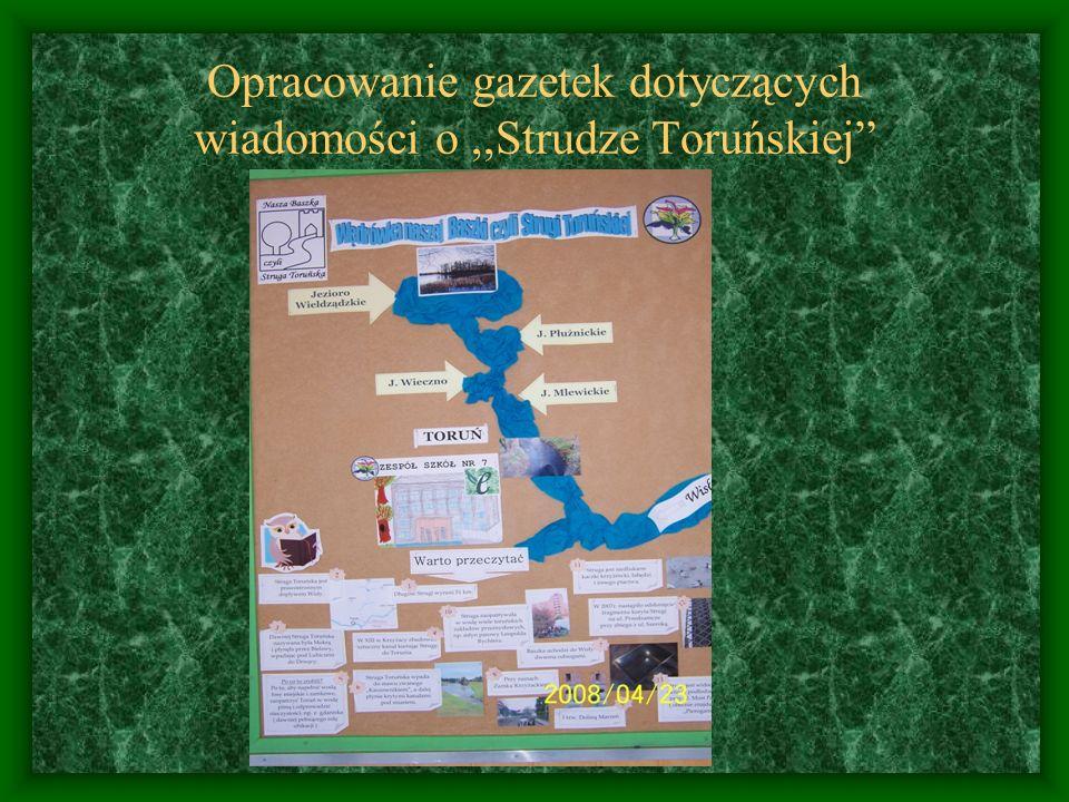 Opracowanie gazetek dotyczących wiadomości o,,Strudze Toruńskiej