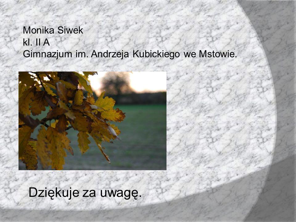 Monika Siwek kl. II A Gimnazjum im. Andrzeja Kubickiego we Mstowie. Dziękuje za uwagę.