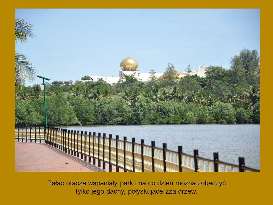 Pałac otacza wspaniały park i na co dzień można zobaczyć tylko jego dachy, połyskujące zza drzew.