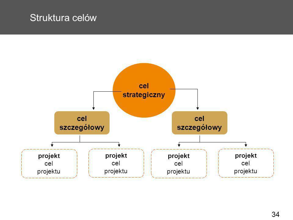 34 Struktura celów cel strategiczny projekt cel projektu cel szczegółowy projekt cel projektu projekt cel projektu projekt cel projektu