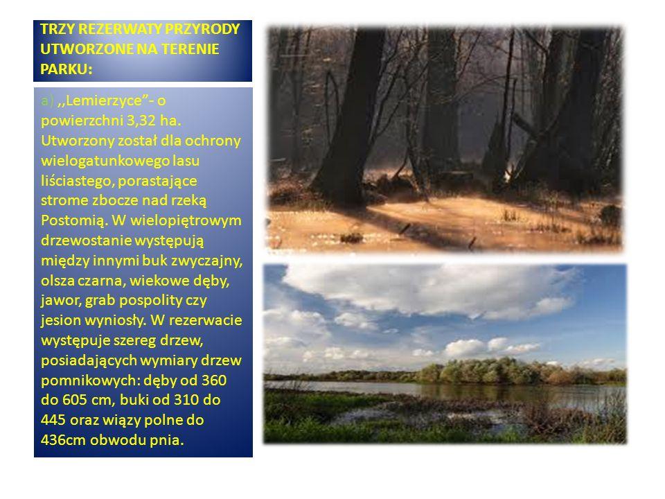 TRZY REZERWATY PRZYRODY UTWORZONE NA TERENIE PARKU: a),,Lemierzyce- o powierzchni 3,32 ha. Utworzony został dla ochrony wielogatunkowego lasu liściast