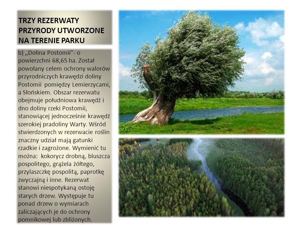 TRZY REZERWATY PRZYRODY UTWORZONE NA TERENIE PARKU b),,Dolina Postomii- o powierzchni 68,65 ha. Został powołany celem ochrony walorów przyrodniczych k