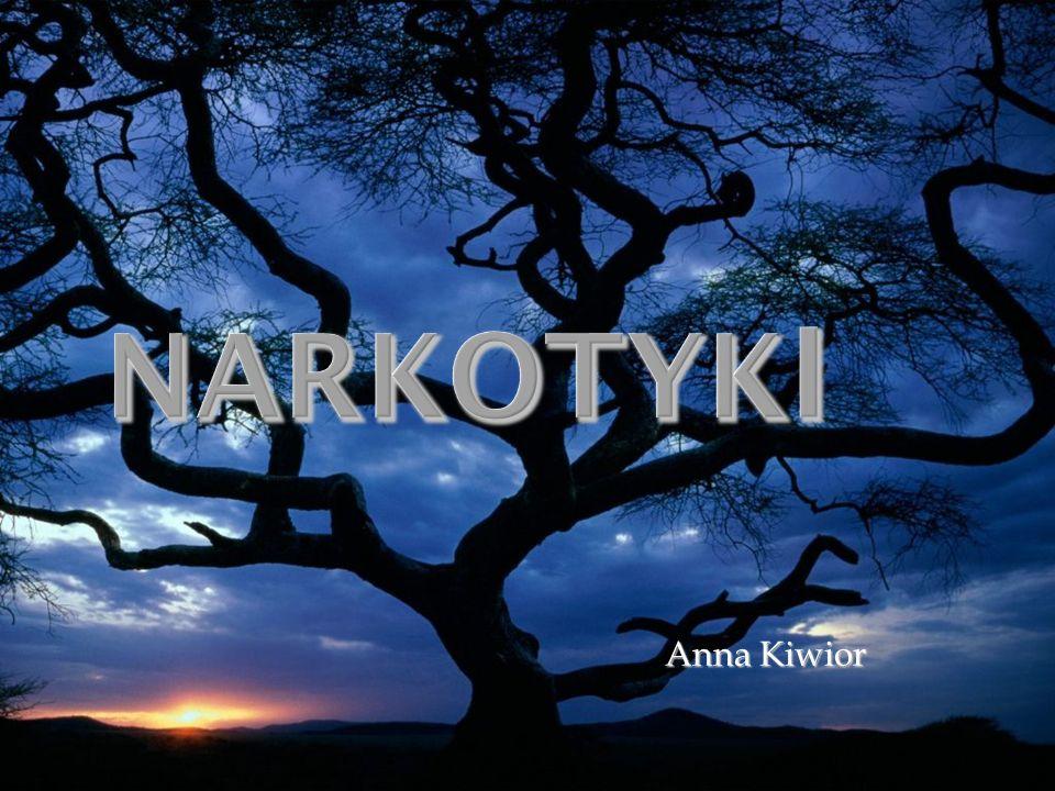 Anna Kiwior