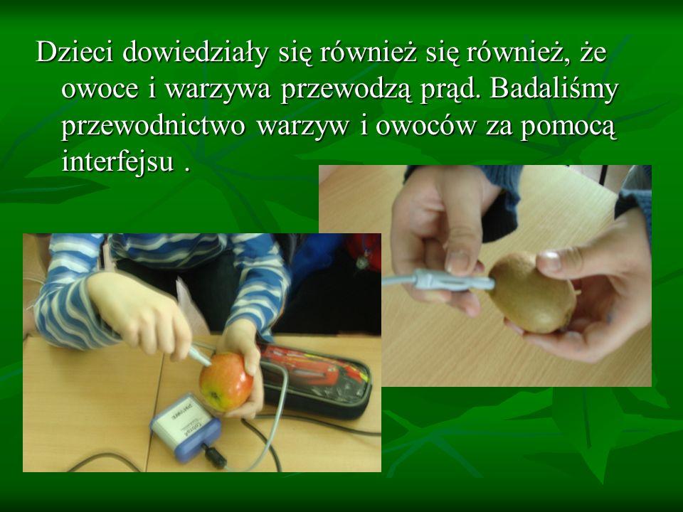 Dzieci dowiedziały się również się również, że owoce i warzywa przewodzą prąd. Badaliśmy przewodnictwo warzyw i owoców za pomocą interfejsu.