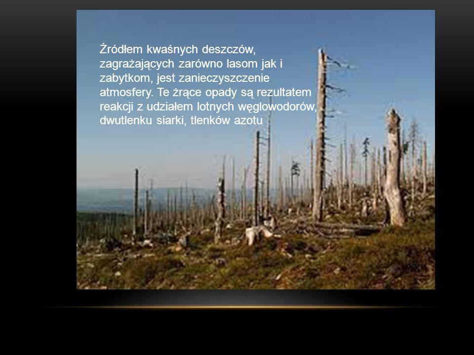 Źródłem kwaśnych deszczów, zagrażających zarówno lasom jak i zabytkom, jest zanieczyszczenie atmosfery. Te żrące opady są rezultatem reakcji z udziałe