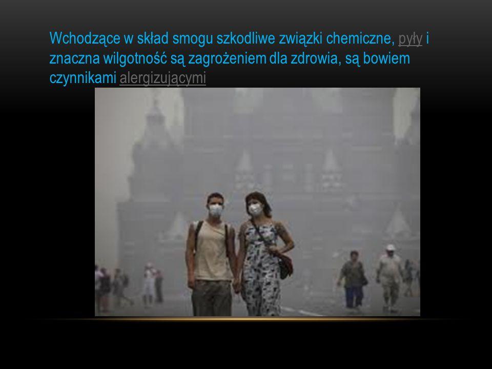 Wchodzące w skład smogu szkodliwe związki chemiczne, pyły i znaczna wilgotność są zagrożeniem dla zdrowia, są bowiem czynnikami alergizującymipyłyaler