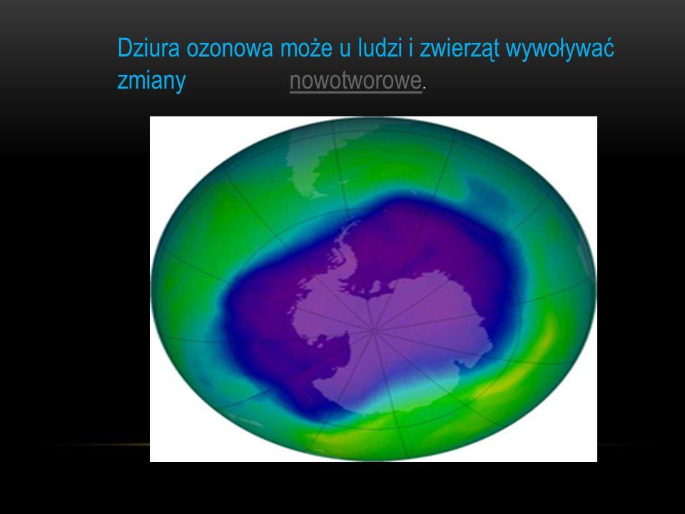 Dziura ozonowa może u ludzi i zwierząt wywoływać zmiany nowotworowe.nowotworowe