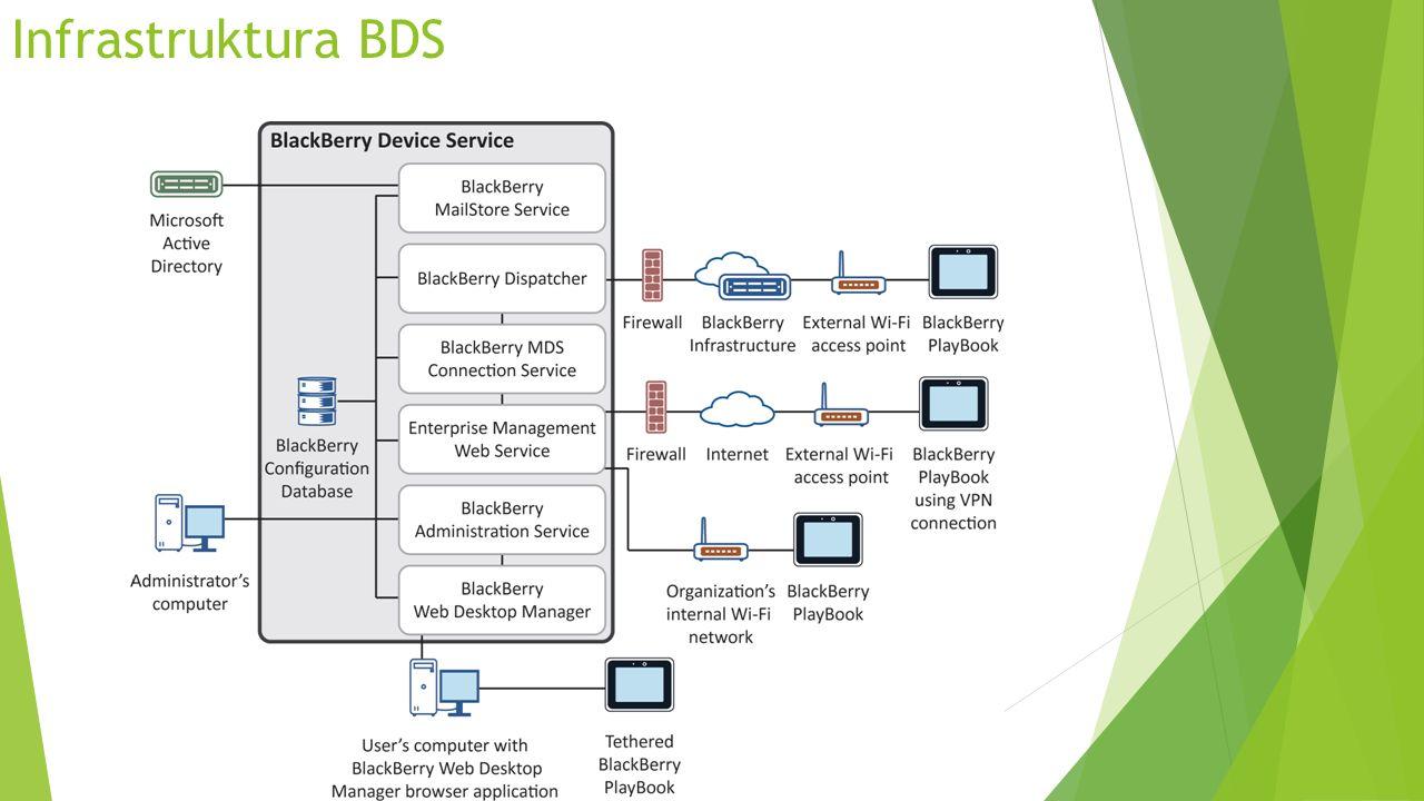 Infrastruktura BDS