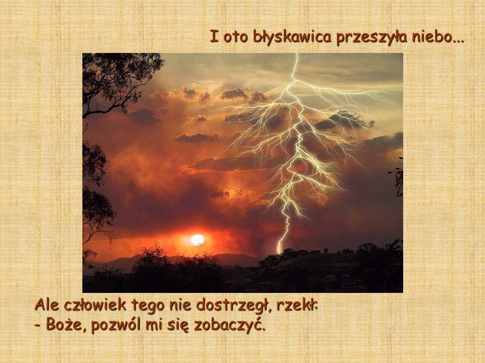 I oto ptak zaśpiewał. Ale człowiek tego nie usłyszał, więc krzyknął: - Boże, przemów do mnie!