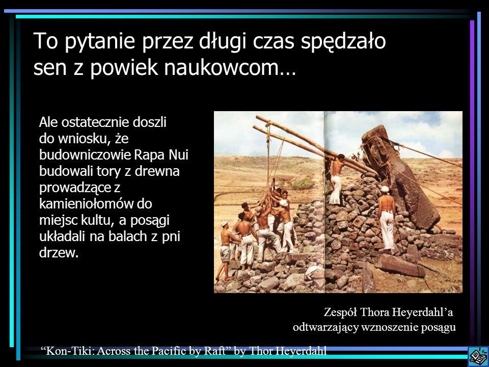 To pytanie przez długi czas spędzało sen z powiek naukowcom… Ale ostatecznie doszli do wniosku, że budowniczowie Rapa Nui budowali tory z drewna prowa