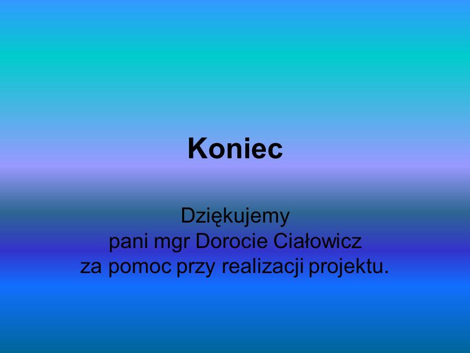 Koniec Dziękujemy pani mgr Dorocie Ciałowicz za pomoc przy realizacji projektu.