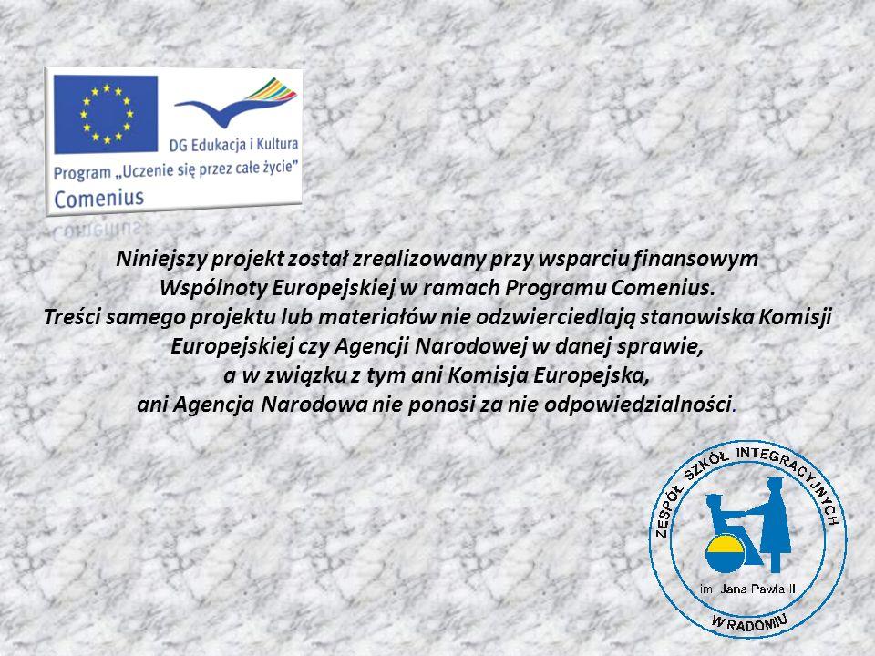 Niniejszy projekt został zrealizowany przy wsparciu finansowym Wspólnoty Europejskiej w ramach Programu Comenius.
