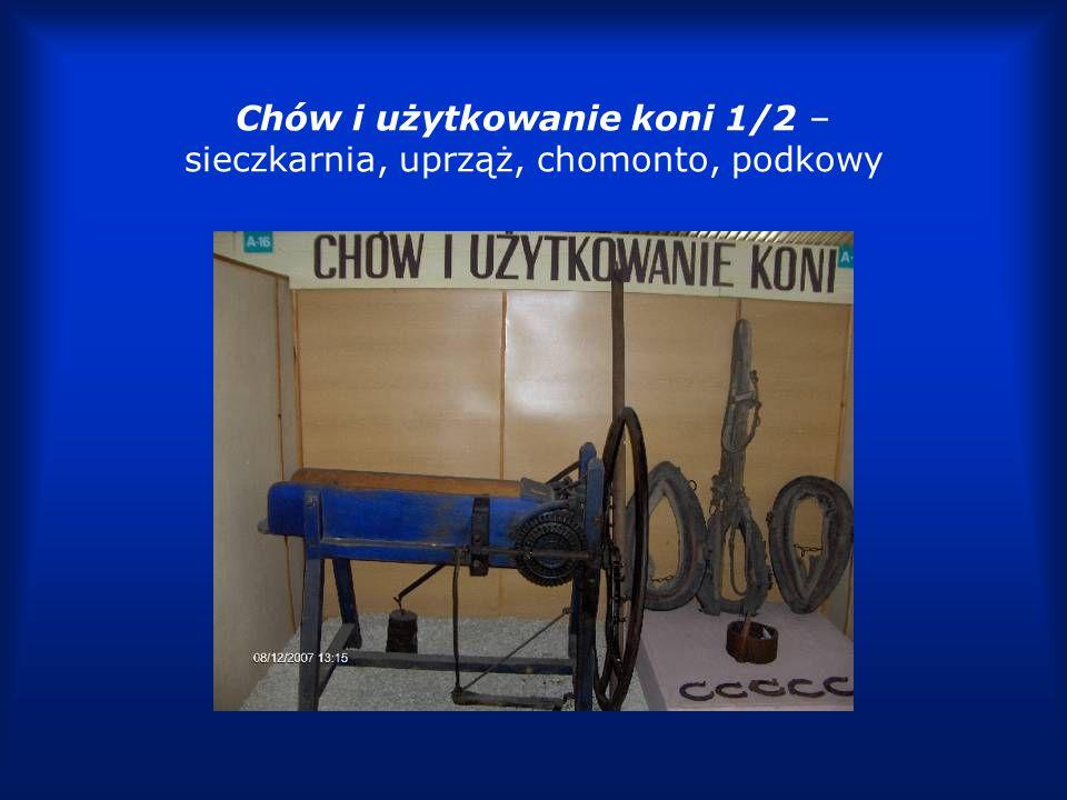 Chów i użytkowanie koni 2/2 – uprząż, wędzidło, klamry
