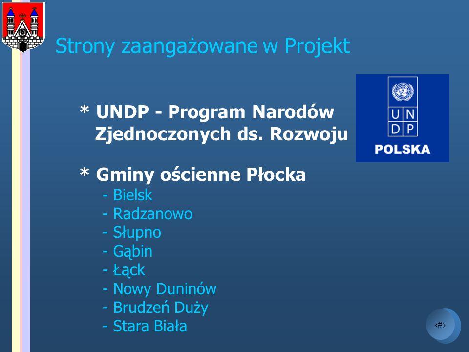 16 Strony zaangażowane w Projekt * UNDP - Program Narodów Zjednoczonych ds. Rozwoju * Gminy ościenne Płocka - Bielsk - Radzanowo - Słupno - Gąbin - Łą