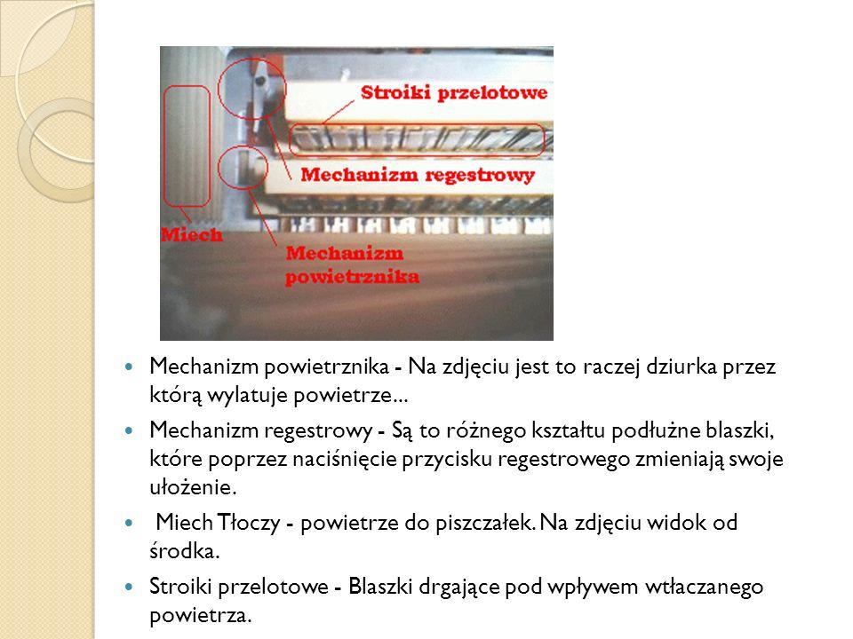 Mechanizm powietrznika - Na zdjęciu jest to raczej dziurka przez którą wylatuje powietrze... Mechanizm regestrowy - Są to różnego kształtu podłużne bl