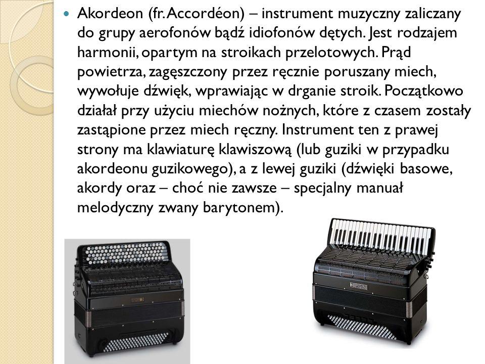 Akordeon (fr. Accordéon) – instrument muzyczny zaliczany do grupy aerofonów bądź idiofonów dętych. Jest rodzajem harmonii, opartym na stroikach przelo