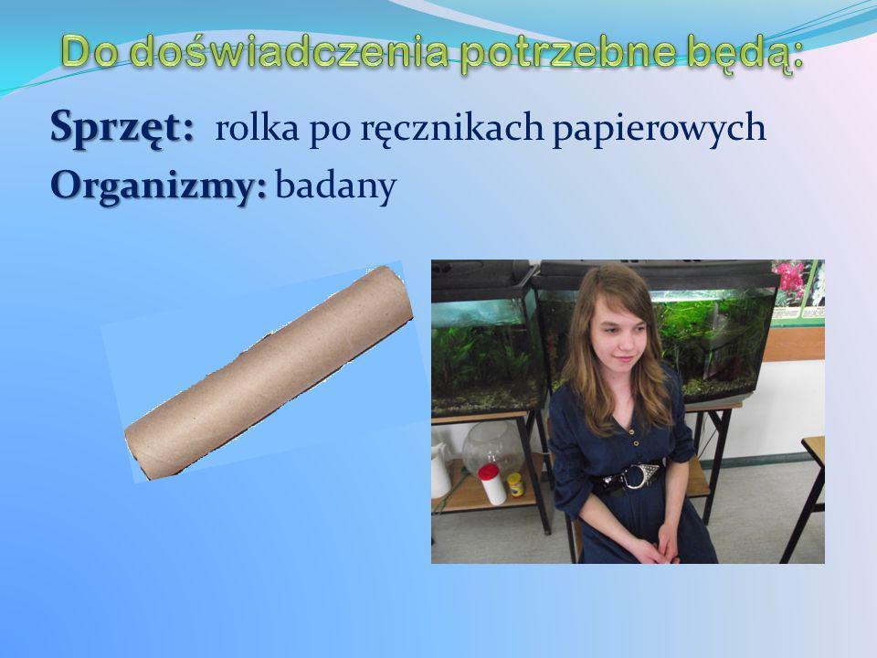 Sprzęt: Sprzęt: rolka po ręcznikach papierowych Organizmy: Organizmy: badany