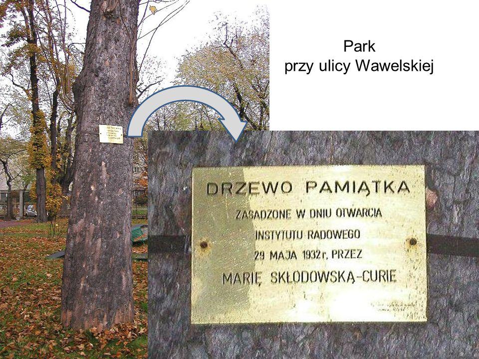 Park przy ulicy Wawelskiej