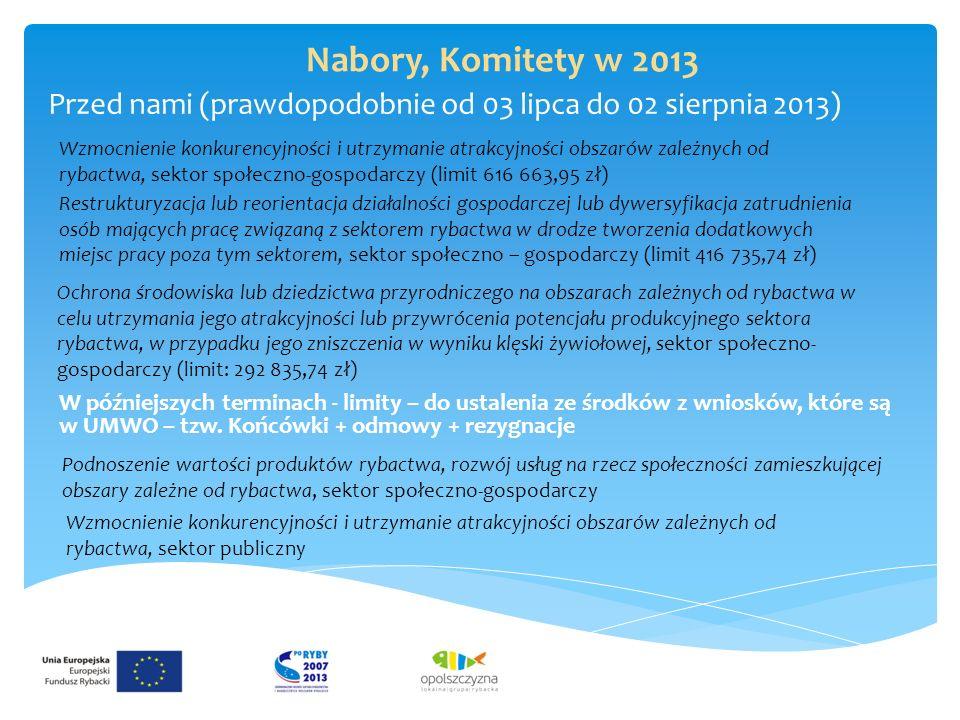 Nabory, Komitety w 2013 Przed nami (prawdopodobnie od 03 lipca do 02 sierpnia 2013) Wzmocnienie konkurencyjności i utrzymanie atrakcyjności obszarów zależnych od rybactwa, sektor społeczno-gospodarczy (limit 616 663,95 zł) Restrukturyzacja lub reorientacja działalności gospodarczej lub dywersyfikacja zatrudnienia osób mających pracę związaną z sektorem rybactwa w drodze tworzenia dodatkowych miejsc pracy poza tym sektorem, sektor społeczno – gospodarczy (limit 416 735,74 zł) Ochrona środowiska lub dziedzictwa przyrodniczego na obszarach zależnych od rybactwa w celu utrzymania jego atrakcyjności lub przywrócenia potencjału produkcyjnego sektora rybactwa, w przypadku jego zniszczenia w wyniku klęski żywiołowej, sektor społeczno- gospodarczy (limit: 292 835,74 zł) W późniejszych terminach - limity – do ustalenia ze środków z wniosków, które są w UMWO – tzw.