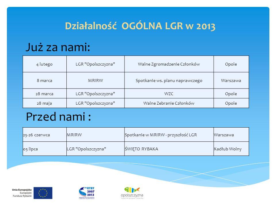 Już za nami: Działalność OGÓLNA LGR w 2013 4 lutegoLGR Opolszczyzna Walne Zgromadzenie CzłonkówOpole 8 marcaMRiRWSpotkanie ws.
