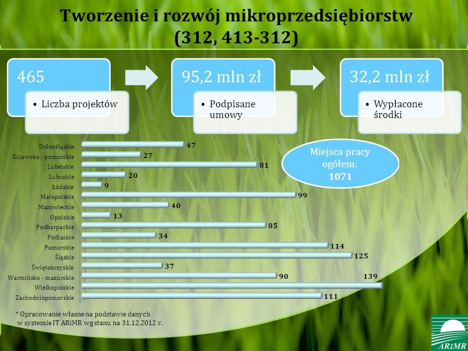 Tworzenie i rozwój mikroprzedsiębiorstw (312, 413-312) 465 Liczba projektów 95,2 mln zł Podpisane umowy 32,2 mln zł Wypłacone środki * Opracowanie własne na podstawie danych w systemie IT ARiMR wg stanu na 31.12.2012 r.