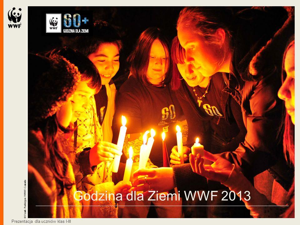 Godzina dla Ziemi WWF 2013 © Frank Parhizgar / WWF-Canada Prezentacja dla uczniów klas I-III