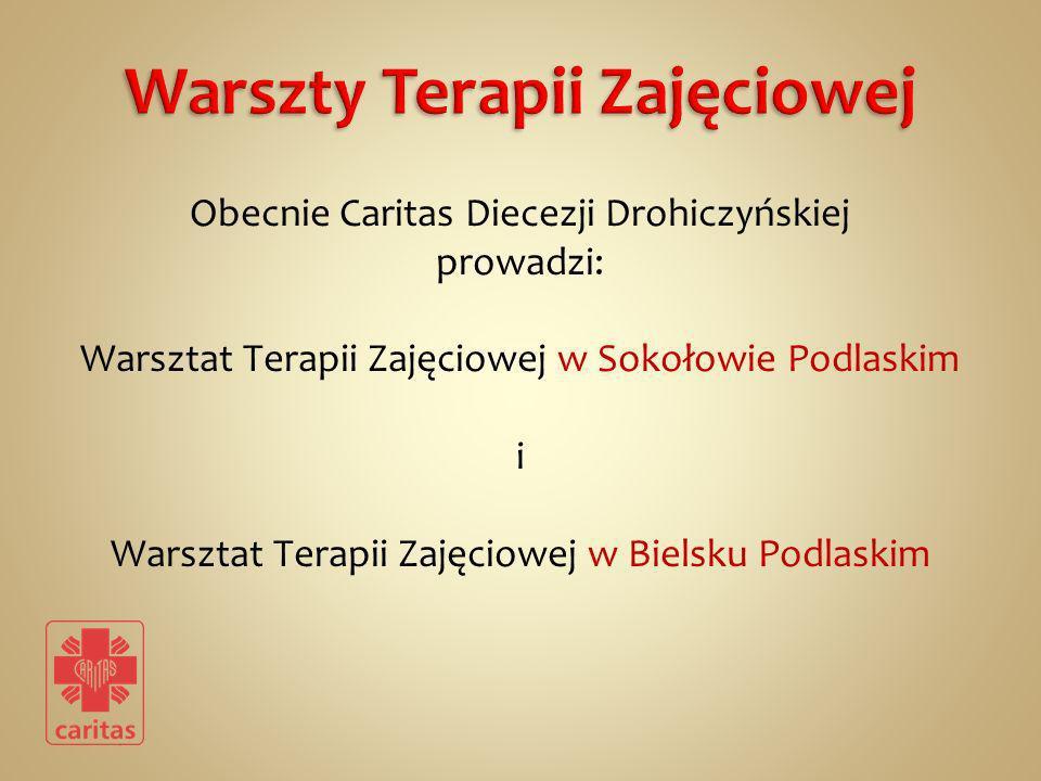 Obecnie Caritas Diecezji Drohiczyńskiej prowadzi: Warsztat Terapii Zajęciowej w Sokołowie Podlaskim i Warsztat Terapii Zajęciowej w Bielsku Podlaskim