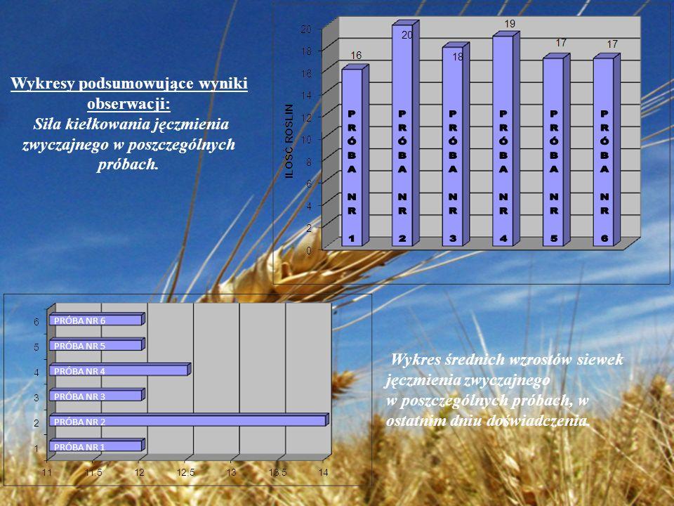 WNIOSEK Z moich obserwacji wynika, że odczyn gleby decyduje o wyglądzie rośliny, natomiast w mniejszym stopniu wpływa na ilość wykiełkowanych nasion oraz na wysokości osiągane przez rośliny.