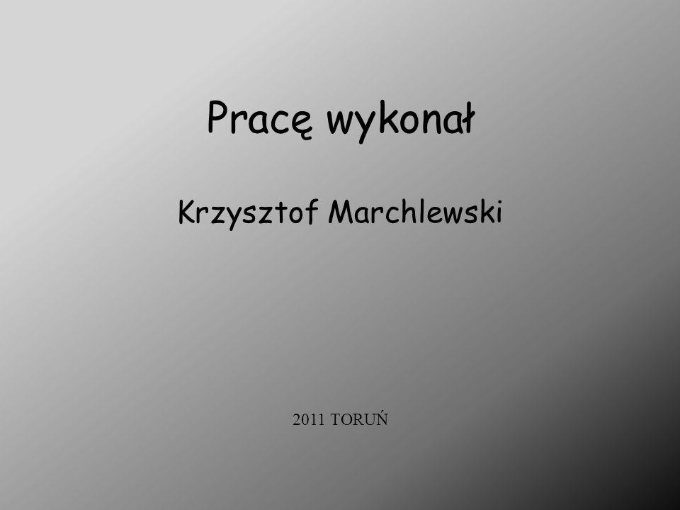 Pracę wykonał Krzysztof Marchlewski 2011 TORUŃ