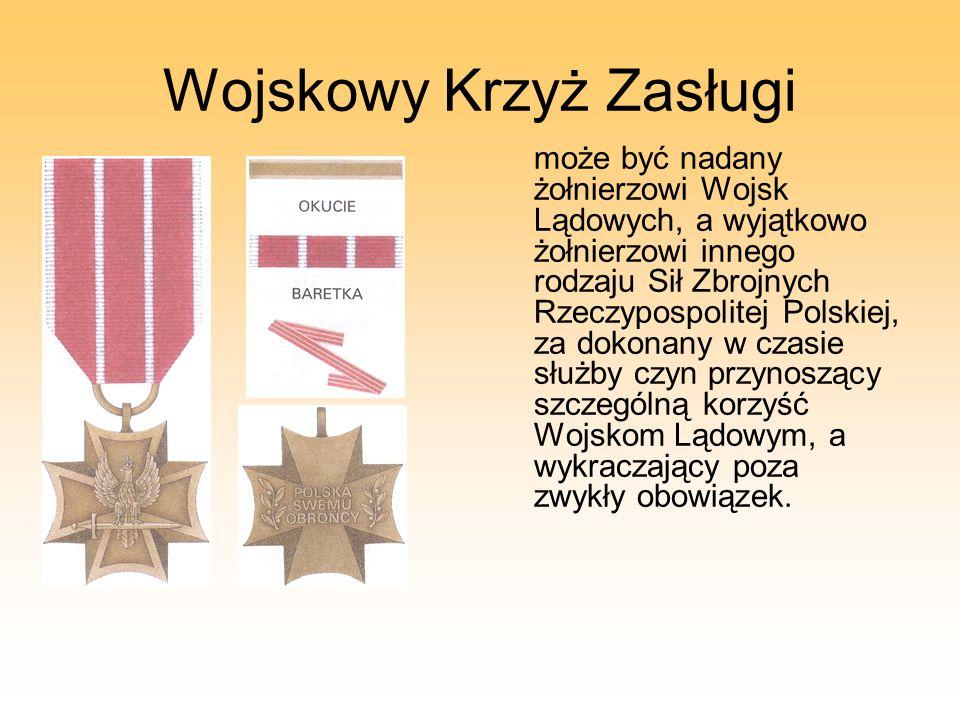 Wojskowy Krzyż Zasługi może być nadany żołnierzowi Wojsk Lądowych, a wyjątkowo żołnierzowi innego rodzaju Sił Zbrojnych Rzeczypospolitej Polskiej, za