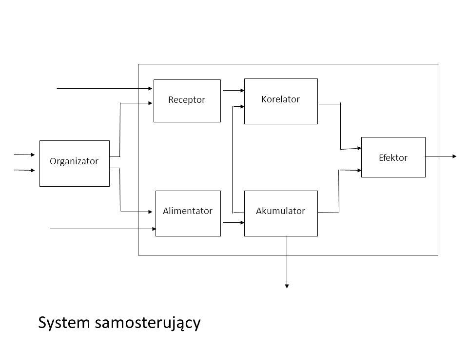 Efektor System samosterujący Alimentator Organizator Receptor Self-controllable system S E2E2 Akumulator E1E1 E 0 - energy dispersion Korelator