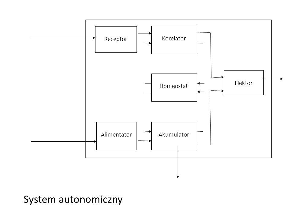 Efektor System autonomiczny Alimentator Receptor Autonomous system S Akumulator E P 0 - power dispersion Korelator Homeostat