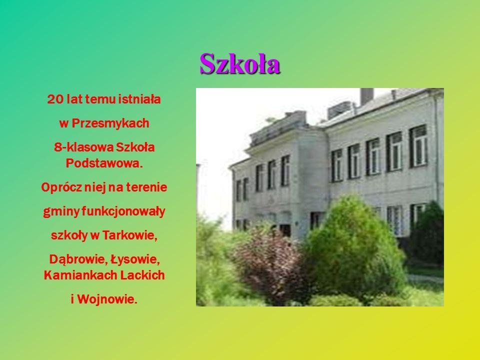 Szkoła 20 lat temu istniała w Przesmykach 8-klasowa Szkoła Podstawowa. Oprócz niej na terenie gminy funkcjonowały szkoły w Tarkowie, Dąbrowie, Łysowie