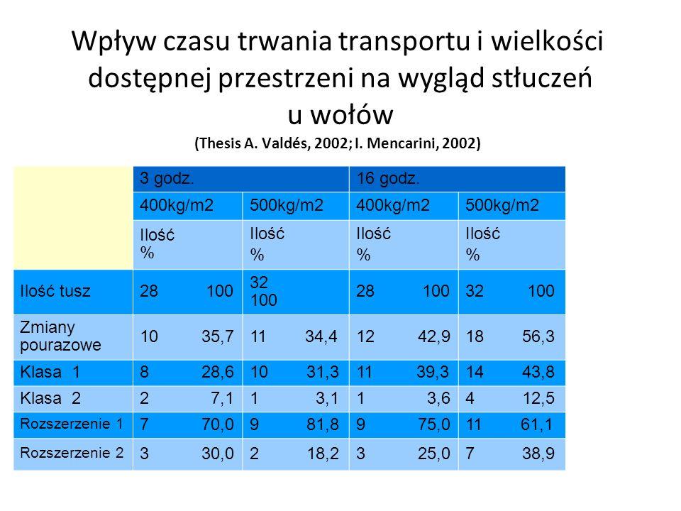 Wpływ czasu trwania transportu i wielkości dostępnej przestrzeni na wygląd stłuczeń u wołów (Thesis A. Valdés, 2002; I. Mencarini, 2002) 3 godz.16 god