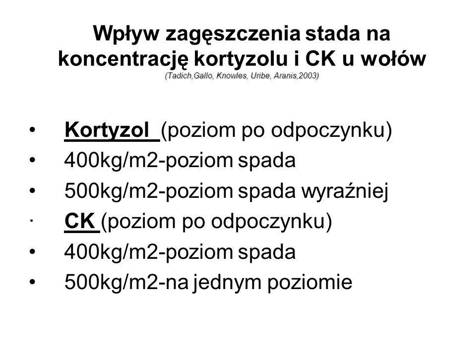 (Tadich,Gallo,Knowles,Uribe,Aranis,2003) Wpływ zagęszczenia stada na koncentrację kortyzolu i CK u wołów (Tadich,Gallo, Knowles, Uribe, Aranis,2003) K