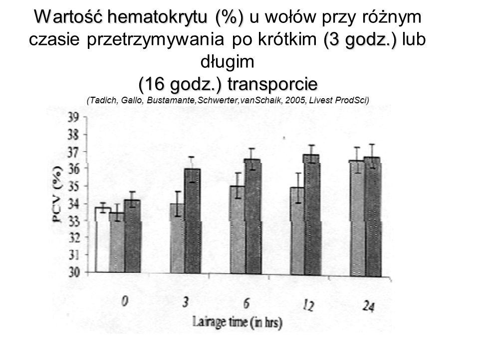 Wartość hematokrytu (%) (3 godz.) (16 godz.)transporcie (Tadich,Gallo,Bustamante,Schwerter,vanSchaik,2005,LivestProdSci) Wartość hematokrytu (%) u wołów przy różnym czasie przetrzymywania po krótkim (3 godz.) lub długim (16 godz.) transporcie (Tadich, Gallo, Bustamante,Schwerter,vanSchaik, 2005, Livest ProdSci) Okres przetrzymywania