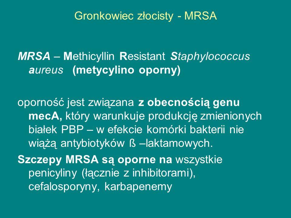 Gronkowiec złocisty - MRSA MRSA – Methicyllin Resistant Staphylococcus aureus (metycylino oporny) oporność jest związana z obecnością genu mecA, który warunkuje produkcję zmienionych białek PBP – w efekcie komórki bakterii nie wiążą antybiotyków ß –laktamowych.