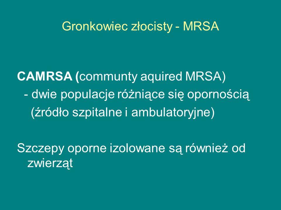 Gronkowiec złocisty - MRSA CAMRSA (communty aquired MRSA) - dwie populacje różniące się opornością (źródło szpitalne i ambulatoryjne) Szczepy oporne izolowane są również od zwierząt