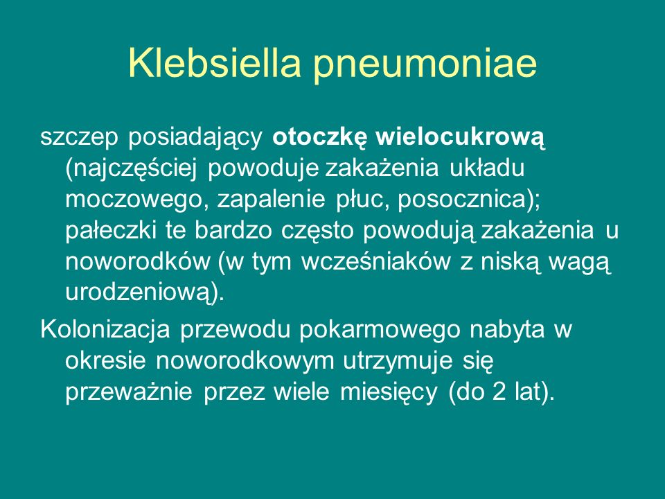 Klebsiella pneumoniae szczep posiadający otoczkę wielocukrową (najczęściej powoduje zakażenia układu moczowego, zapalenie płuc, posocznica); pałeczki te bardzo często powodują zakażenia u noworodków (w tym wcześniaków z niską wagą urodzeniową).