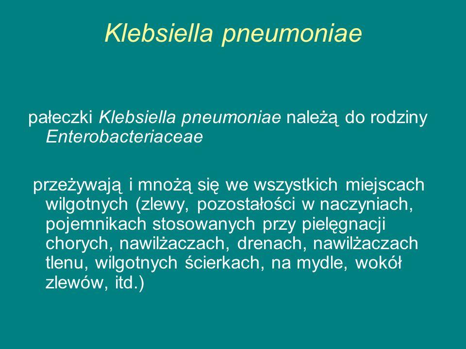Klebsiella pneumoniae pałeczki Klebsiella pneumoniae należą do rodziny Enterobacteriaceae przeżywają i mnożą się we wszystkich miejscach wilgotnych (zlewy, pozostałości w naczyniach, pojemnikach stosowanych przy pielęgnacji chorych, nawilżaczach, drenach, nawilżaczach tlenu, wilgotnych ścierkach, na mydle, wokół zlewów, itd.)