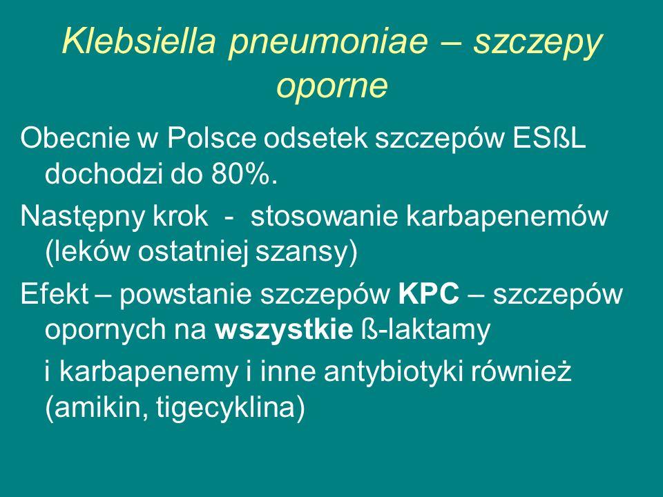 Klebsiella pneumoniae – szczepy oporne Obecnie w Polsce odsetek szczepów ESßL dochodzi do 80%.