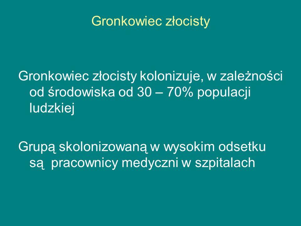 Gronkowiec złocisty Gronkowiec złocisty kolonizuje, w zależności od środowiska od 30 – 70% populacji ludzkiej Grupą skolonizowaną w wysokim odsetku są pracownicy medyczni w szpitalach