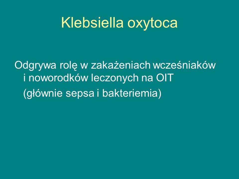 Klebsiella oxytoca Odgrywa rolę w zakażeniach wcześniaków i noworodków leczonych na OIT (głównie sepsa i bakteriemia)