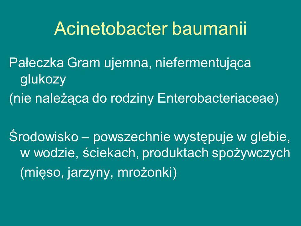 Acinetobacter baumanii Pałeczka Gram ujemna, niefermentująca glukozy (nie należąca do rodziny Enterobacteriaceae) Środowisko – powszechnie występuje w glebie, w wodzie, ściekach, produktach spożywczych (mięso, jarzyny, mrożonki)