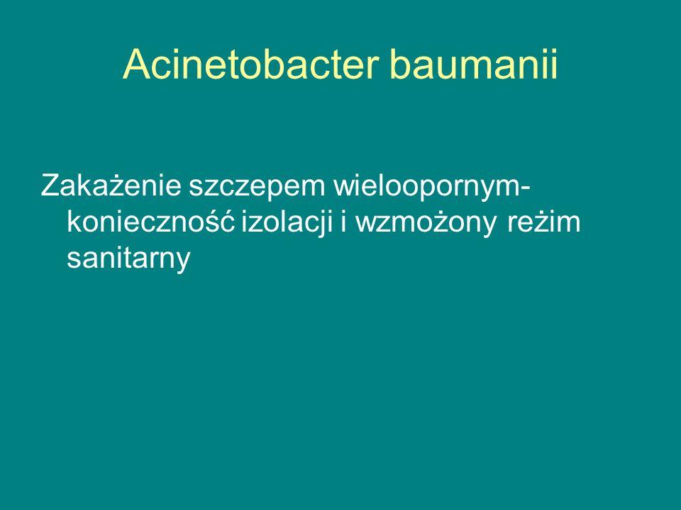 Acinetobacter baumanii Zakażenie szczepem wieloopornym- konieczność izolacji i wzmożony reżim sanitarny