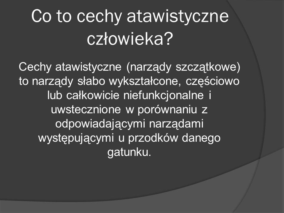 Co to cechy atawistyczne człowieka? Cechy atawistyczne (narządy szczątkowe) to narządy słabo wykształcone, częściowo lub całkowicie niefunkcjonalne i