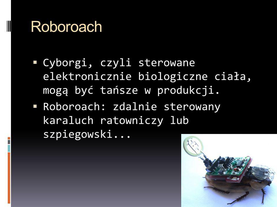 Roboroach Cyborgi, czyli sterowane elektronicznie biologiczne ciała, mogą być tańsze w produkcji. Roboroach: zdalnie sterowany karaluch ratowniczy lub