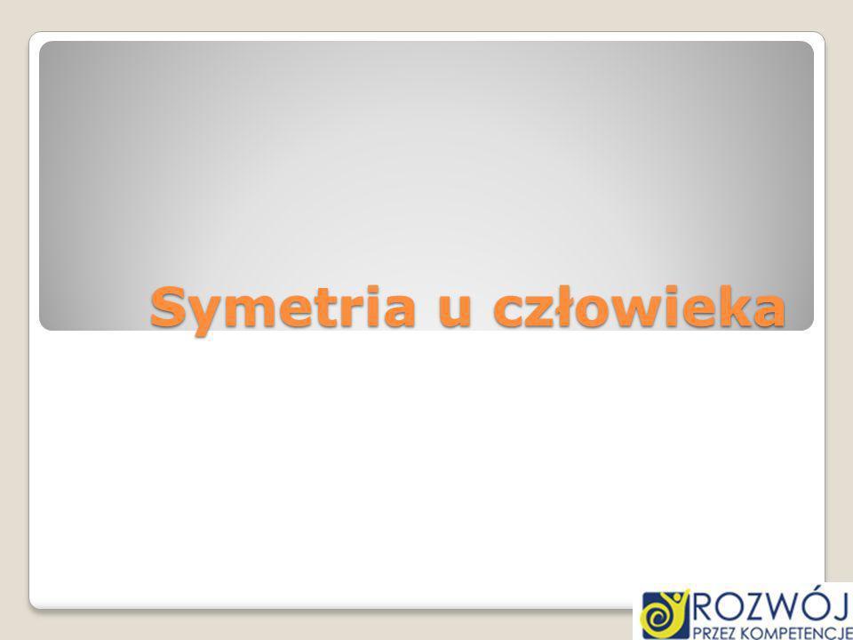 Symetria u człowieka